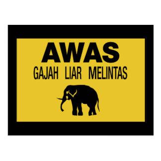 Beware Wild Elephant, Traffic Sign, Malaysia Postcard