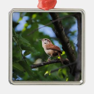 Bewick's Wren Backyard Bird Silver-Colored Square Decoration