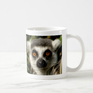 Bewildered Lemur  Mug