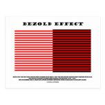 Bezold Effect (Optical Illusion)
