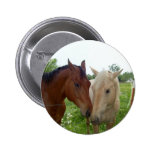 BFF Best Friends Forever - Horses Buttons