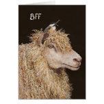 BFF card with sheep and chickadee