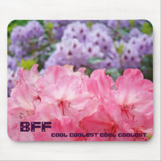 BFF cool coolest BFF mousepad gifts Pink Rhodies