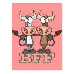 BFF cow best friends forever buddies Postcard