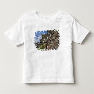 Bhutanese writing on rocks and Nepalese chortens T-shirts