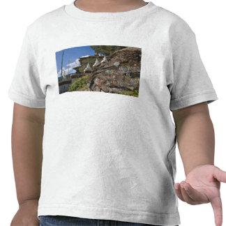 Bhutanese writing on rocks and Nepalese chortens Tee Shirts