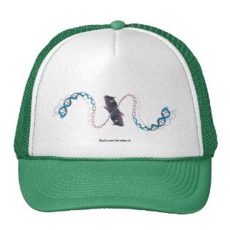 Bi-Polar Opposites Hat