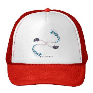 Bi-Polar Opposites II Hat