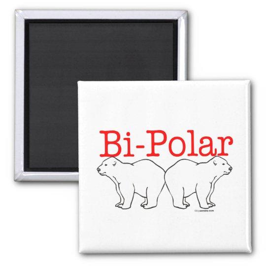 Bi-Polar Square Magnet