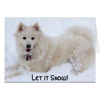 biancasnow, Let it Snow! Card