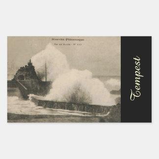 Biarritz Ruse de Marée Tempest 1920 Rectangle Sticker