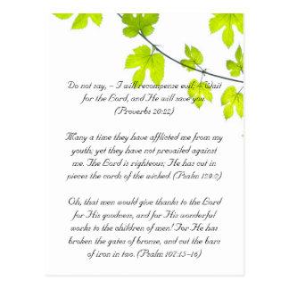 Bible passage, green leaves postcard