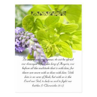 Bible passage,herbs close up postcard
