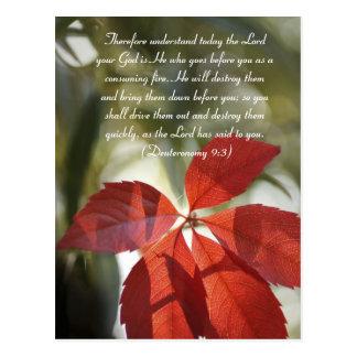 Bible passage, red autumn leaf postcard
