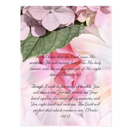 Bible passage, rose floral design postcard