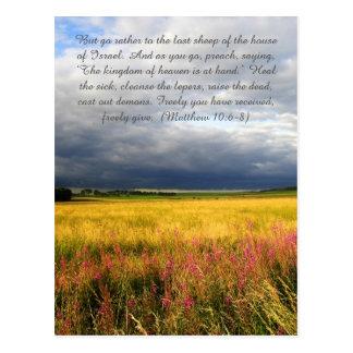 Bible passage, Scottish meadows Postcard