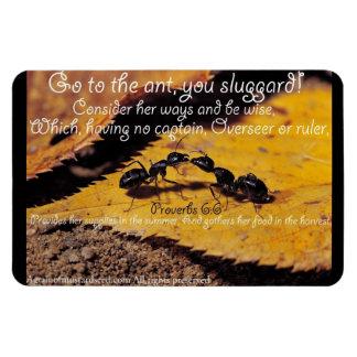 Bible Quotes Inspirational Rectangular Magnet