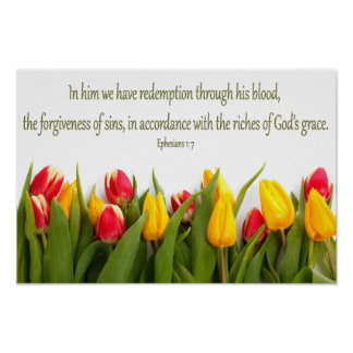 Bible Scripture Ephesians 1: 7 Colorful Tulips Poster