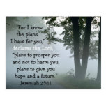 Bible Verse Jeremiah 29:11 Custom Postcard