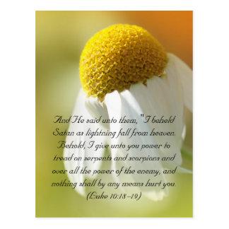 Bible verses, Daisy Postcard