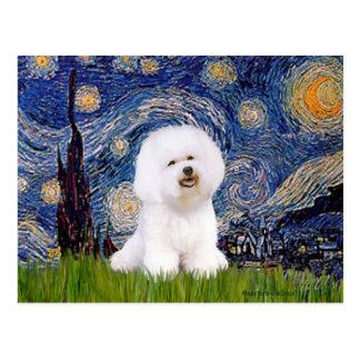 Bichon 1 - Starry Night Postcard