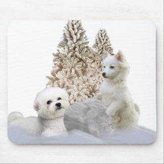 Bichon  & American Eskimo Snow play Mouse Pad