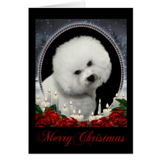 Bichon Christmas Card