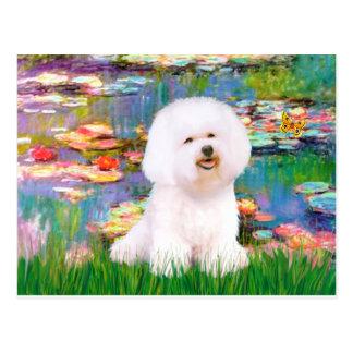 Bichon Frise 1 - Lilies 2 Post Card