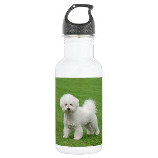 Bichon Frise 532 Ml Water Bottle
