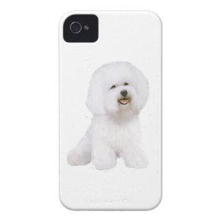 Bichon Frise (A) iPhone 4 Cover