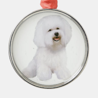 Bichon Frise (A) Christmas Ornament
