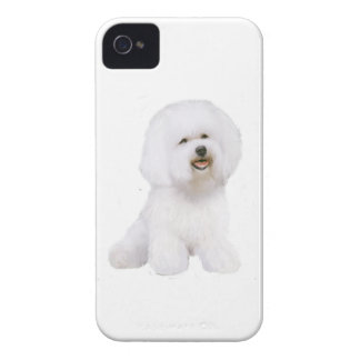 Bichon Frise (A) iPhone 4 Cover