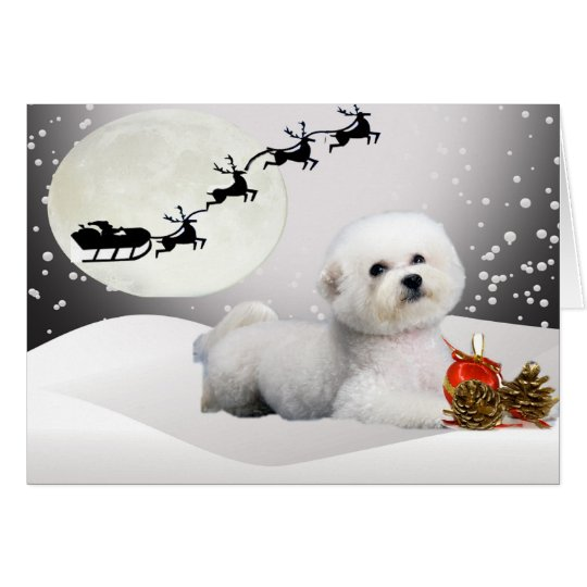 Bichon Frise A Merry Christmas Greeting Card