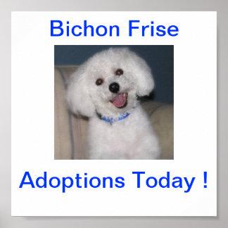 Bichon Frise Adoption Today Sign Poster