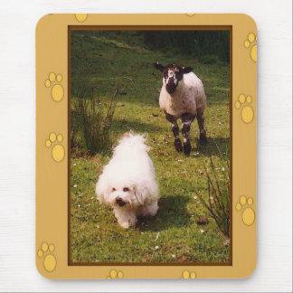 Bichon Frise and Lamb Mousepad