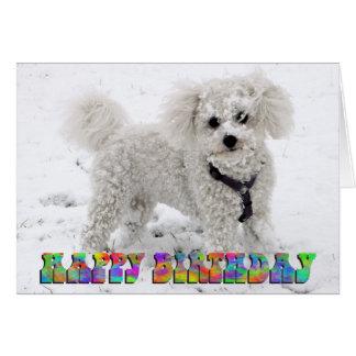 Bichon Frise birthday card