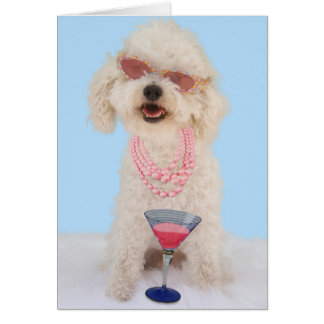 Bichon Frise Birthday Card by Focus for a Cause