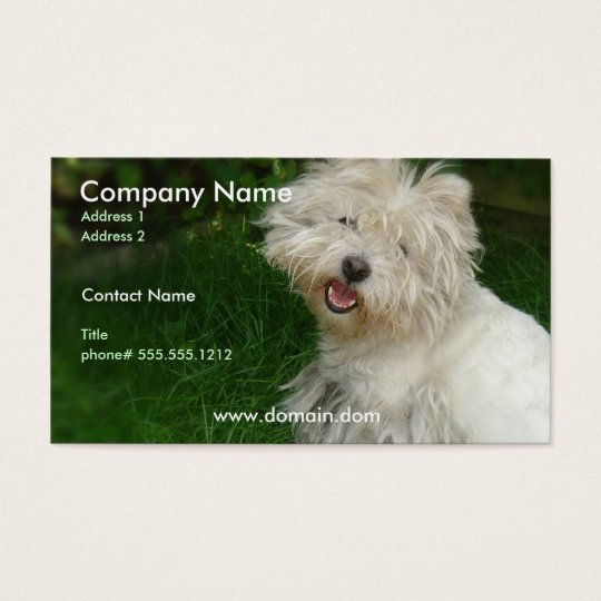 Bichon Frise Business Card