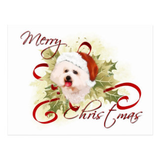 Bichon Frise Christmas Postcards