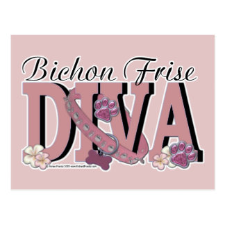 Bichon Frise DIVA Postcard