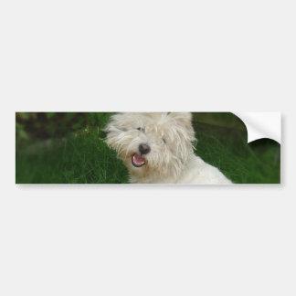 Bichon Frise Dog Bumper Sticker Car Bumper Sticker