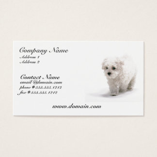 Bichon Frise Dog Business Card