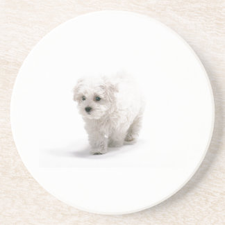 Bichon Frise Dog Coaster