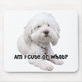 Bichon Frise Dog Mouse Mat