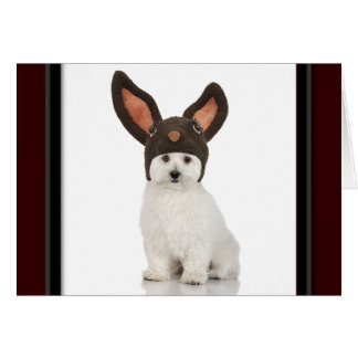 Bichon Frise Doggy With Bunny Hat Greeting Card