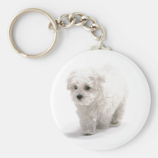 Bichon Frise Photo Keychain