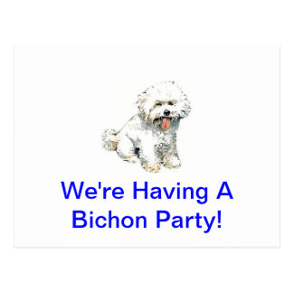 Bichon Frise Post Cards