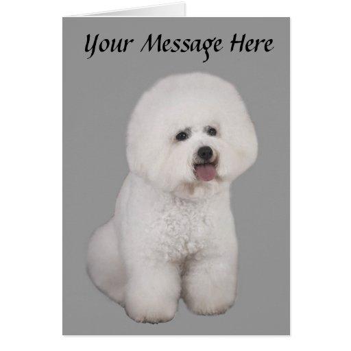 Bichon Frise Precious Greeting Card