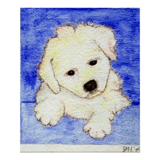 Bichon Frise Puppy Dog Portrait Poster