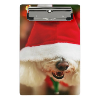 Bichon Frise puppy wearing Santa costume Mini Clipboard